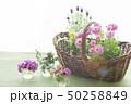 花とバスケット 50258849