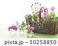 花とバスケット 50258850