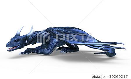 ドラゴン 50260217