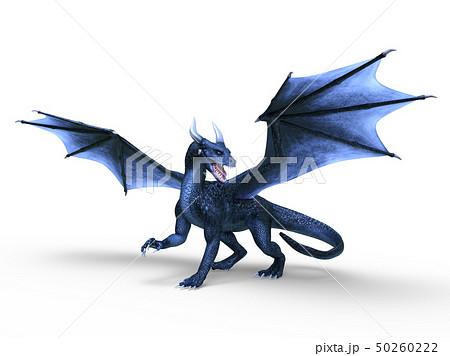 ドラゴン 50260222