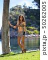 きれい 綺麗 美しいの写真 50262005