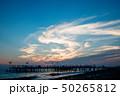 桟橋 海岸 空の写真 50265812
