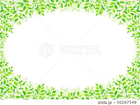 背景素材_木の葉 50267549
