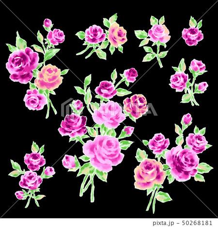 薔薇イラスト素材 50268181