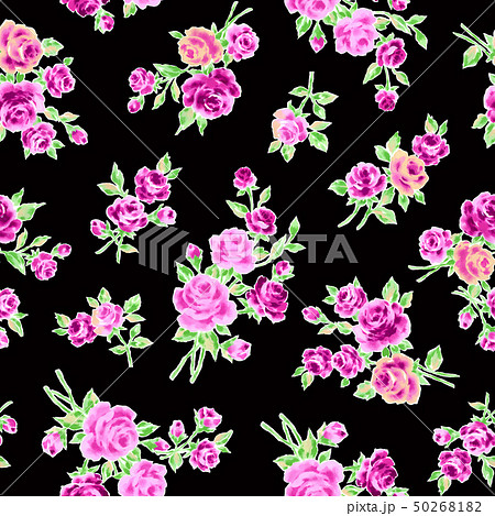 薔薇イラスト素材 50268182