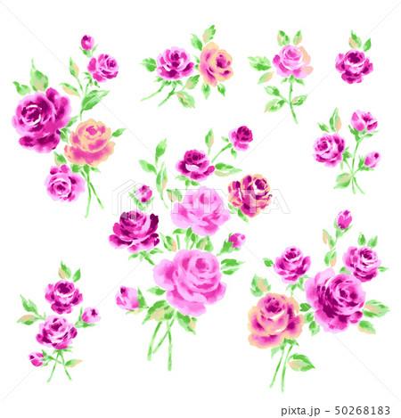 薔薇イラスト素材 50268183