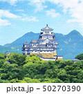 姫路城 西側( 名古山から ) 50270390
