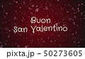 50273605