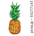 パイナップル パイン パインアップルのイラスト 50277143