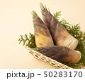 竹の子 50283170