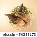 竹の子 50283173