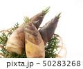 竹の子 50283268
