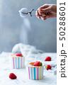苺のシフォンケーキ 50288601