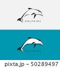 いるか イルカ 海豚のイラスト 50289497