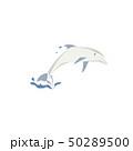 いるか イルカ 海豚のイラスト 50289500