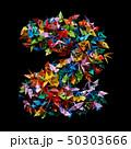 折り紙 鶴 おりがみの写真 50303666