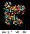 折り紙 鶴 おりがみの写真 50303686
