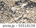石垣島の浜のアップ 50318138