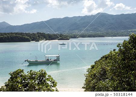 石垣島の川平湾の俯瞰の風景 50318144
