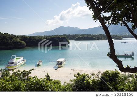石垣島の川平湾の俯瞰の風景 50318150