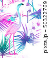 Background with tropical plants, flowers, birds 50322769
