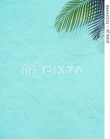 背景-南国-夏-ビーチ-ブルー 50324446