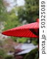 傘 お茶 赤の写真 50325089
