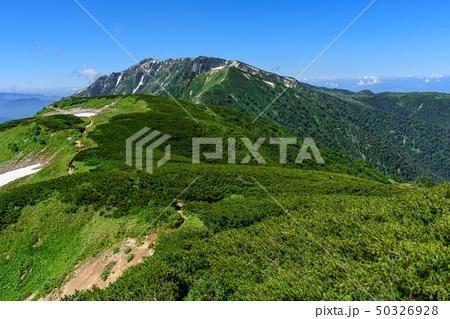 抜戸岳への稜線(北アルプス) 50326928