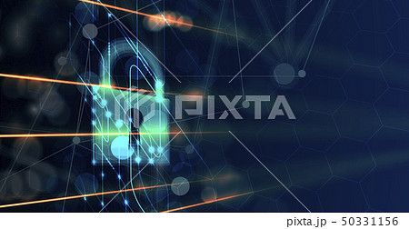 Cyber security and information or network 50331156