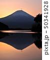 田貫湖の逆さ富士-77060 50341928