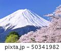河口湖畔の桜と富士山-77004 50341982