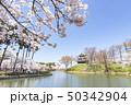 日本 風景 城の写真 50342904