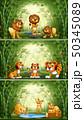 青竹 森林 林のイラスト 50345089