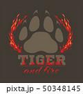 タイガー トラ 虎のイラスト 50348145