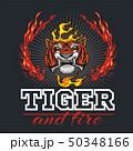 タイガー トラ 虎のイラスト 50348166