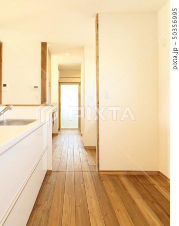 ペット同居型デザイナーズ住宅のお洒落なキッチン 50356995