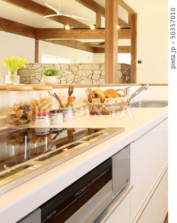 ペット同居型デザイナーズ住宅のお洒落なキッチン 50357010