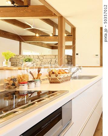 ペット同居型デザイナーズ住宅のお洒落なキッチン 50357012
