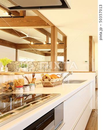 ペット同居型デザイナーズ住宅のお洒落なキッチン 50357013