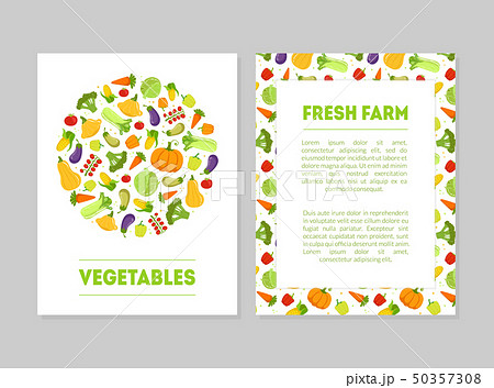 Fresh Farm Vegetables Banner Templates Set with Fresh Organic Food and Place for Text, Design 50357308