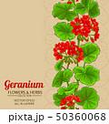 geleranium vector background 50360068
