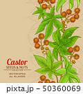 castor vector background 50360069