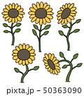 手描き 花 フラワーのイラスト 50363090