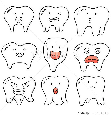 vector set of tooth 50364042