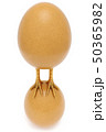 chicken egg with golden chicken feet is on the chicken egg. concept of domination and success 50365982