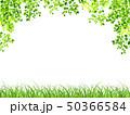 新緑 若葉 草原のイラスト 50366584