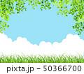 新緑(若葉) 50366700