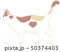 猫 動物 三毛猫のイラスト 50374403