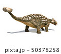 Ankylosaurus dinosaur isolated on white 50378258