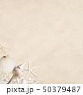 背景-海-夏-ビーチ-貝殻-砂 50379487